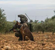 Израильский спецназ готовился на Кипре к миссиям в секторе Газа, Ливане и Сирии