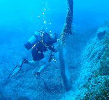 Кипрские дайверы навели чистоту на дне моря ради счастья черепах