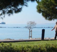 Погода на Кипре: сначала солнце, затем пыль, которую смоют дожди