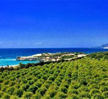 Удивительный Кипр: идеи для путешествий по острову (видео)