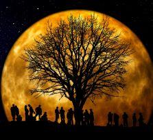 В августе мы увидим красную Луну и звездопад Персеид