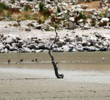 К концу XXI века на Кипре станет слишком жарко